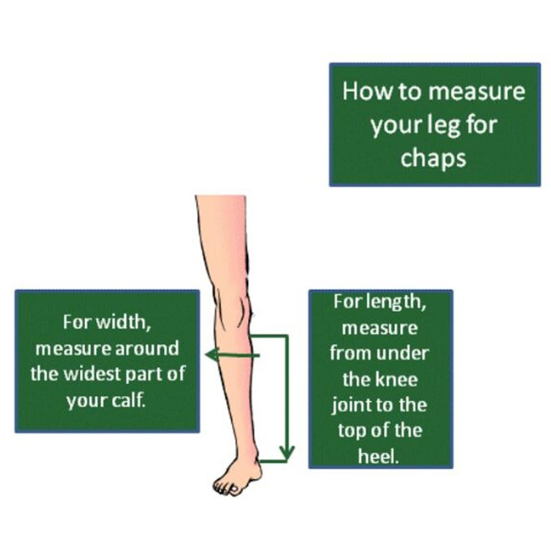 Chaps measurement graph 1500 x1500